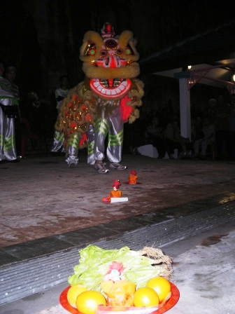 zhong hua lion dance performance