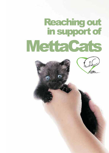 mettacats notebook